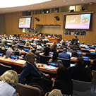 Beit Issie Shapiro at the UN