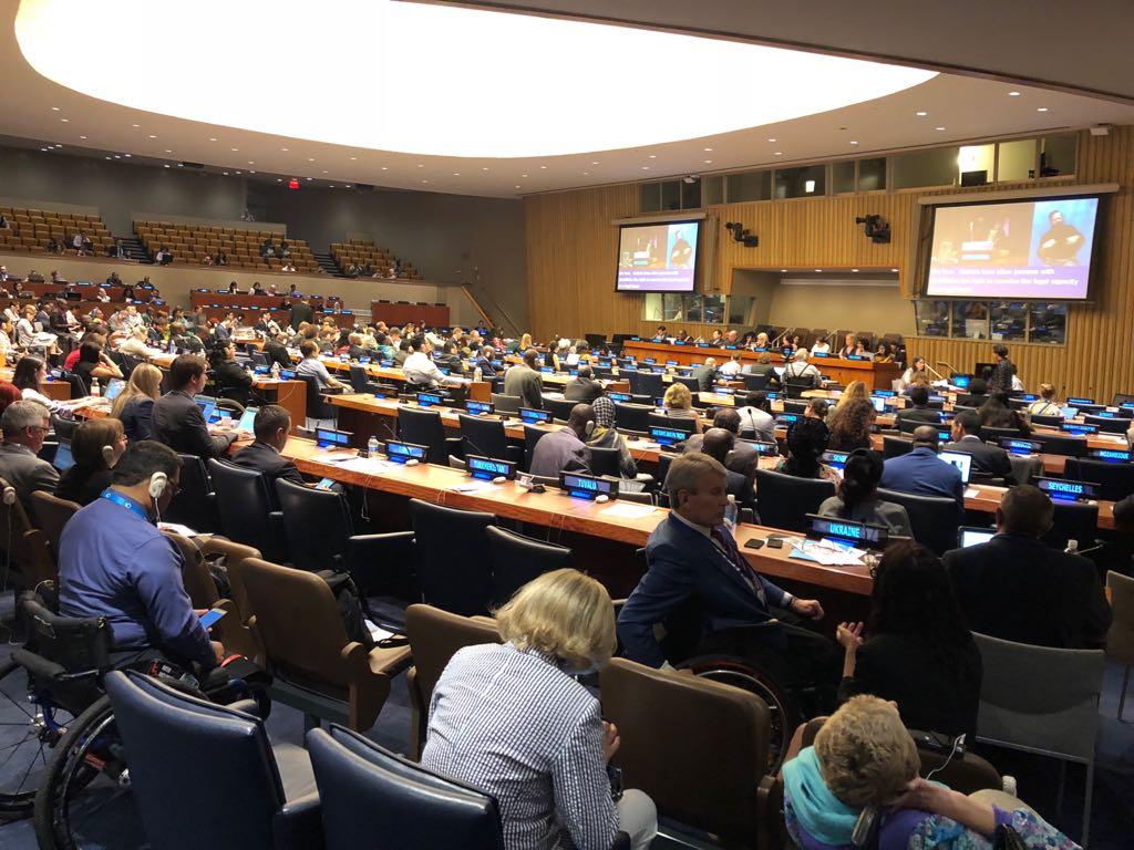 Beit Issie Shapiro at the UN